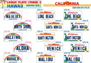 LICENSE PLATE STICKER2