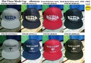 OBT CAP1