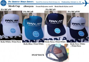 PA MESH CAP2